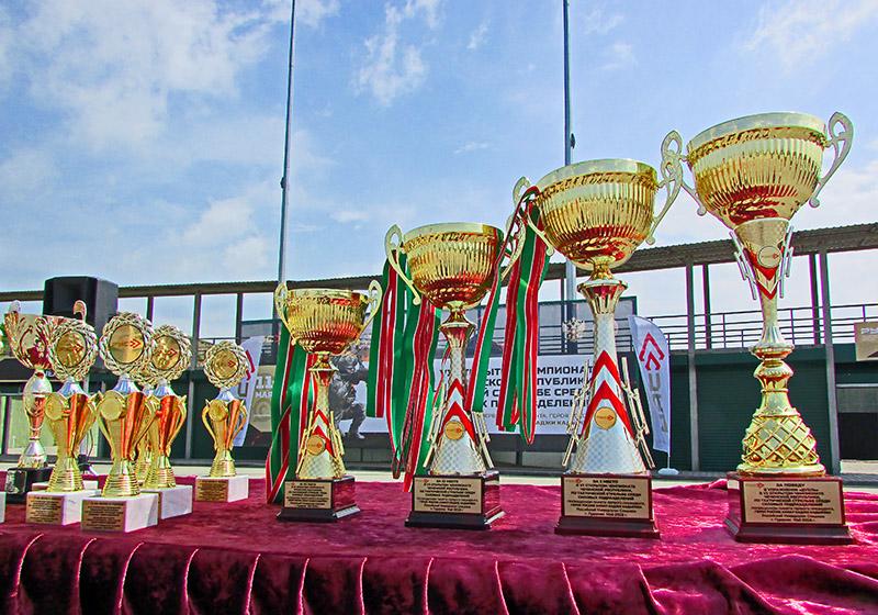 Награды чемпионата