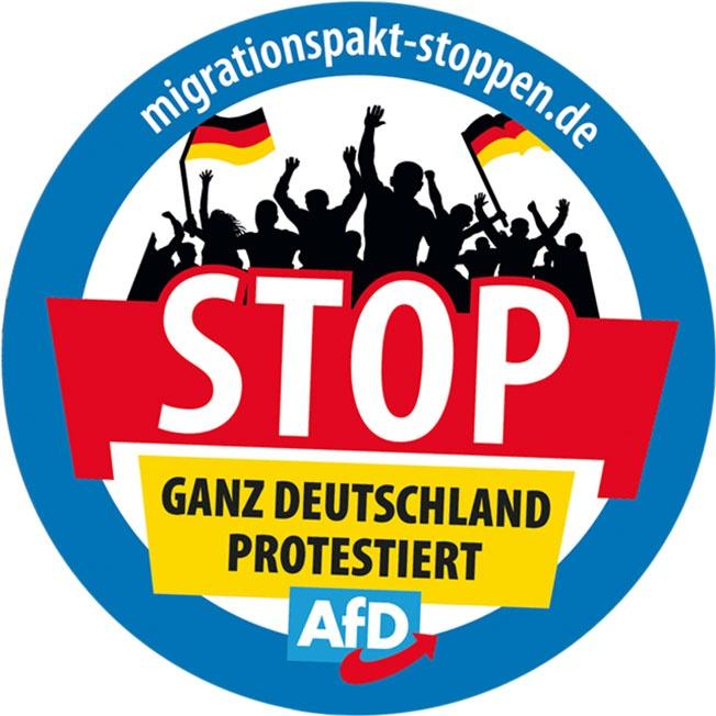 Популисты из «Альтернативы для Германии» выдвинулись на протестах против мигрантов.
