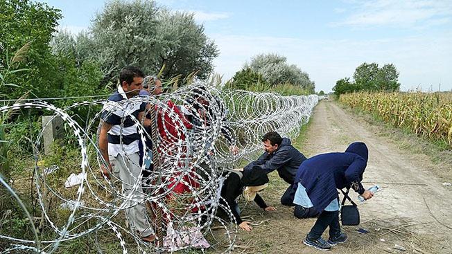 ЕС предлагают усилить контроль на внешних границах.