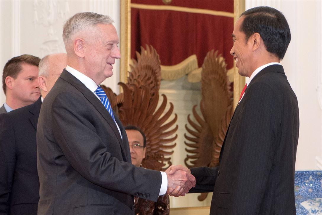 Встреча Джэймса Мэттиса и президента Индонезии Джоко Видодо в январе 2018 года
