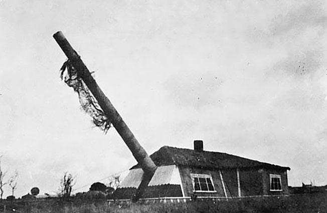 Замаскированное 305 мм орудие германской батареи «Мирус».