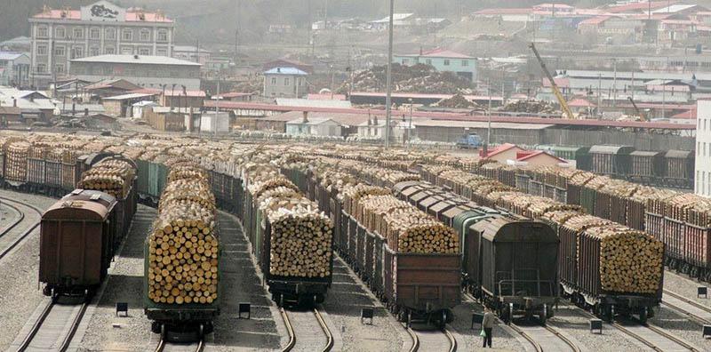 Сибирский лес на пути в Китай.