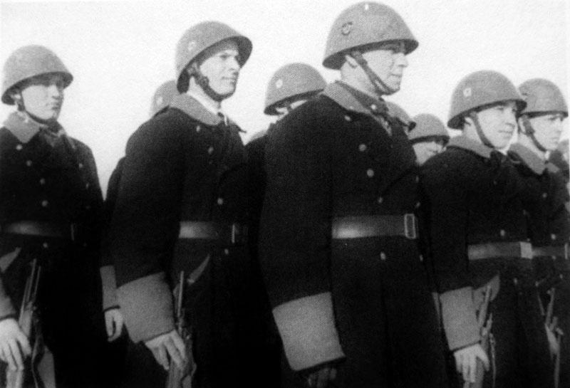 Подразделения литовской вспомогательной полиции принимавшее участие в подавлении партизанского движения, карательных акциях и уничтожении евреев.