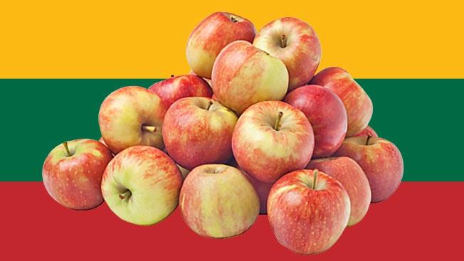 В 1944 году Красную Армию в Литве встречали яблоками, начинёнными иголками