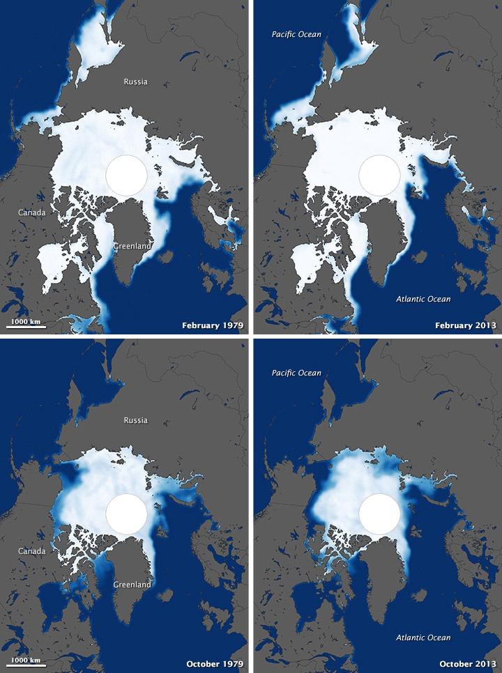 Динамика таяние льдов в Арктике.