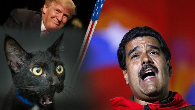 США запустили в ближний круг Николаса Мадуро «чёрную кошку»