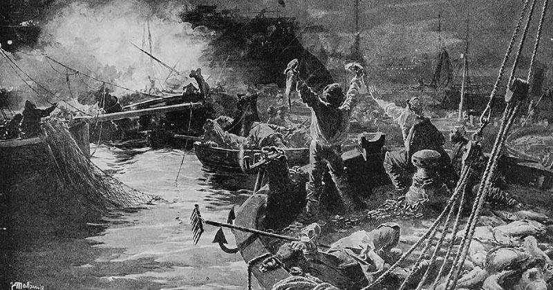 Несколько наших офицеров утверждали, что успели заметить миноносцы, прикрывавшиеся мирными пароходами.