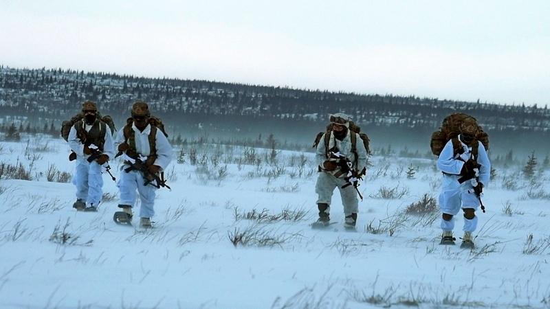 Известен факт подготовки как минимум трёх отрядов «зелёных беретов» для возможной заброски в Арктику.