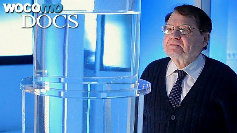 Сотрудник Института Пастера лауреат Нобелевской премии вирусолог Люк Монтанье.