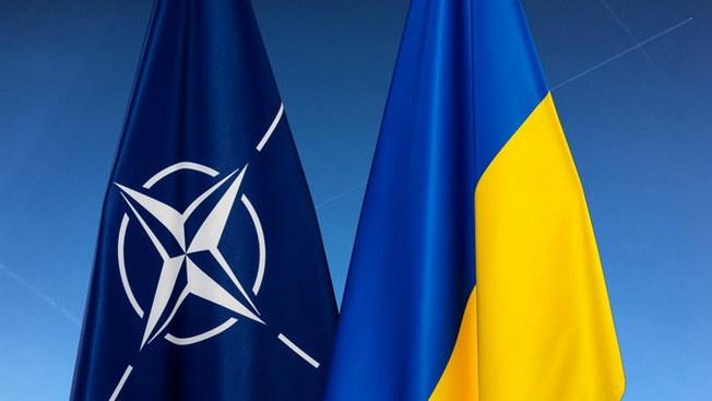 Статус для Украины: расширенный партнёр или вассал