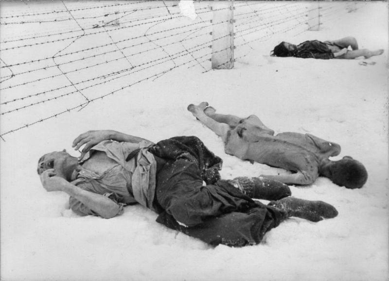 Погибшие заключённые концлагеря Освенцим.
