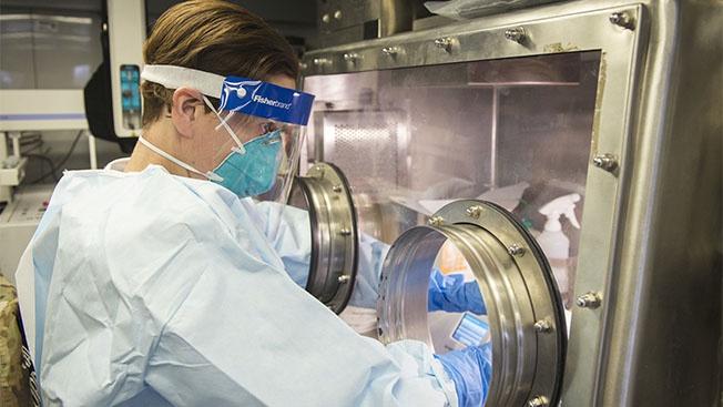 «Экспериментаторы» модифицировали шип-белок коронавируса, который и является инструментом заражения человеческой клетки.