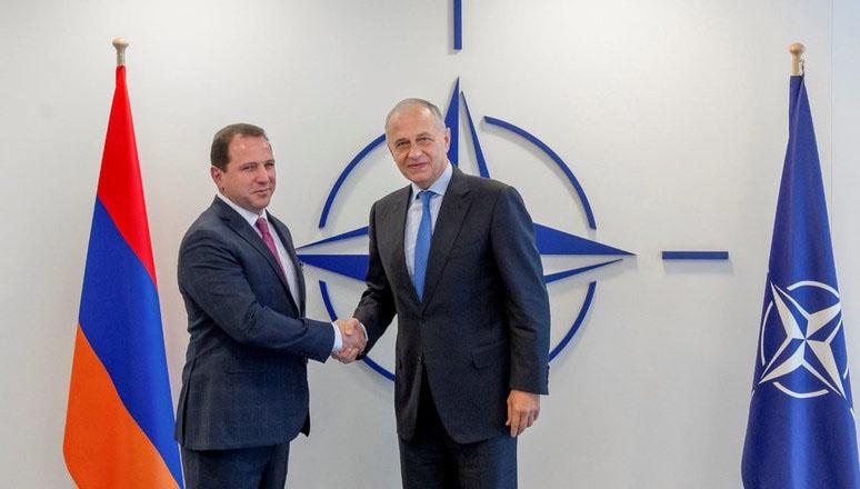 Встреча заместителя генерального секретаря НАТО Мирча Джоанэ и министра обороны Республики Армения Давида Тонояна.