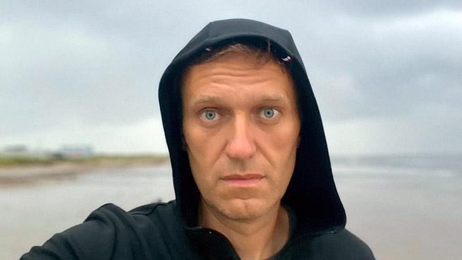 Кто всё-таки подсыпал яд Навальному?