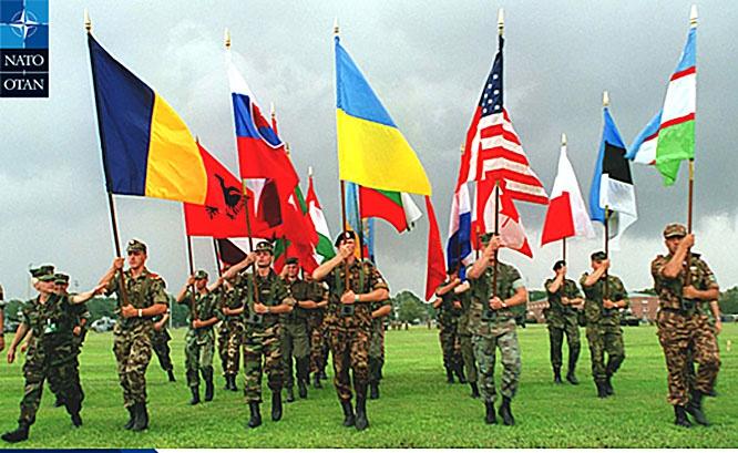 США оказало помощь восточноевропейским странам в рамках программы Partnership for Peace («Партнёрство ради мира»).