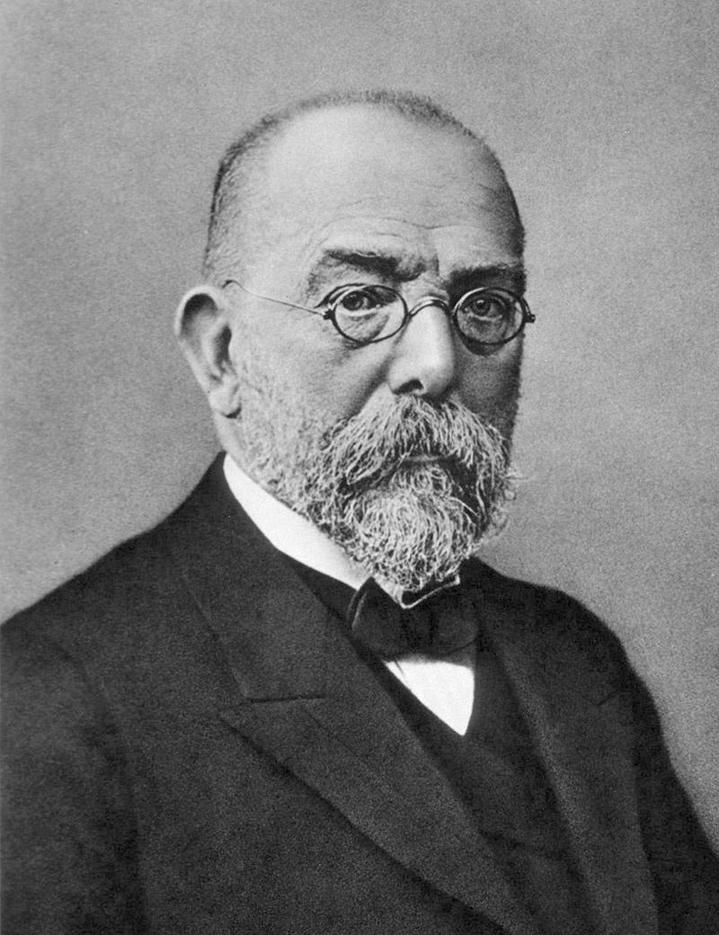 Роберт Кох в 1882 году открыл возбудителя туберкулёза Mycobacterium tuberculosis.