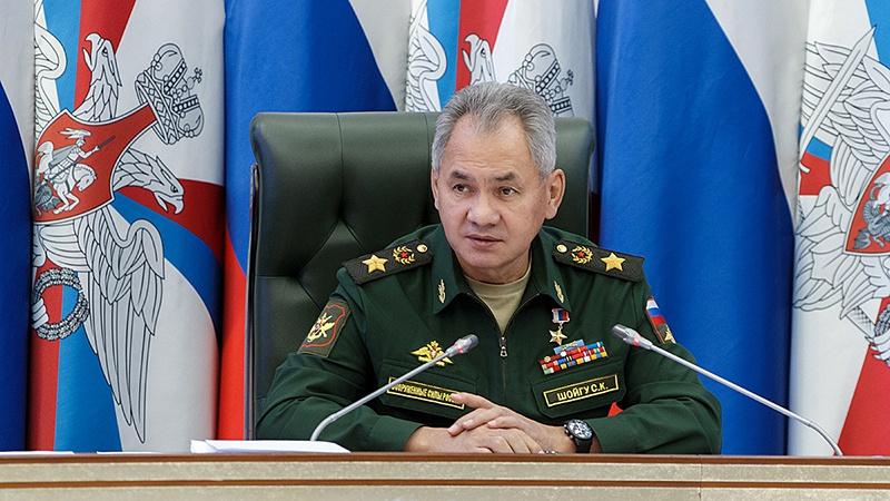 Министр обороны Российской Федерации генерал армии Сергей Шойгу на заседании Коллегии Минобороны РФ.