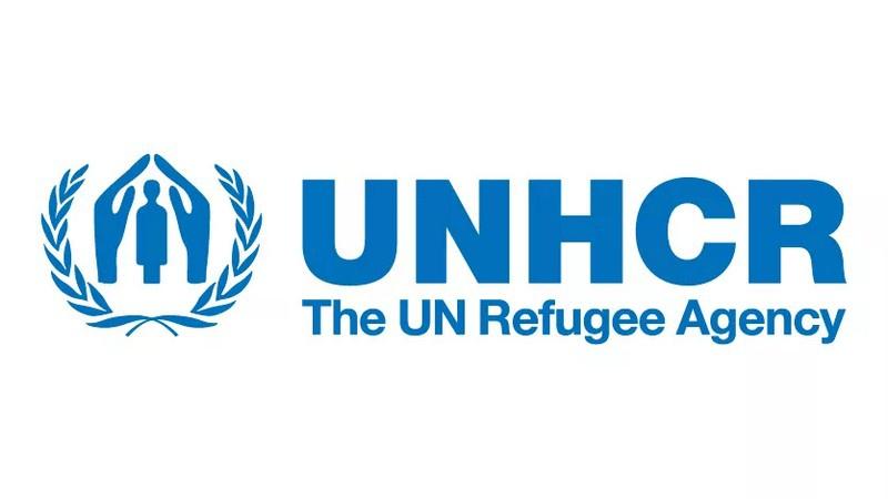 Проблемой вынужденных переселенцев занимается Управление Верховного комиссара ООН по делам беженцев (УВКБ ООН), созданное 14 декабря 1950 года.