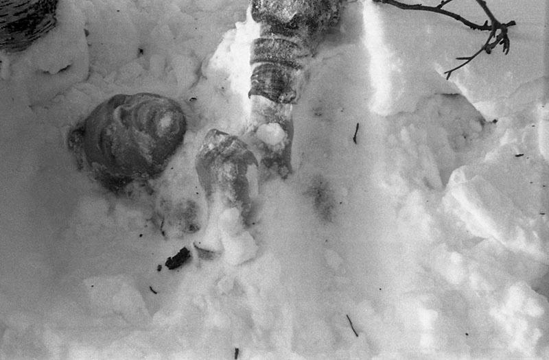 Тело руководителя группы Дятлова лежало на спине.