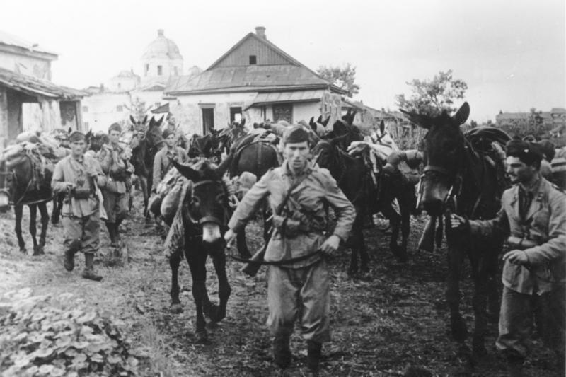 В войне против Советского Союза участвовали воинские части главной союзницы Германии - Италии.