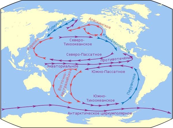 Карта течений Тихого океана.