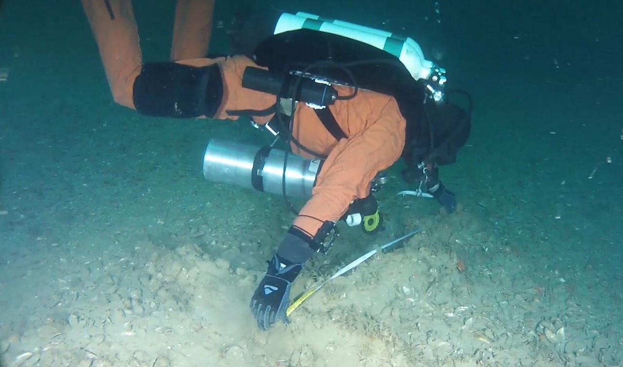 Современная аппаратура способна найти монетку на глубине 900 метров, тепловизор идентифицирует живое существо на дистанции пять миль в любых условиях.