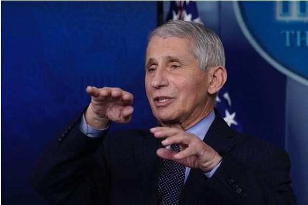 Жертвой информационной атаки в попытке США обвинить Китай в происхождении COVID-19 стал главный инфекционист Америки, директор Национального института аллергии и инфекционных заболеваний Энтони Фаучи.