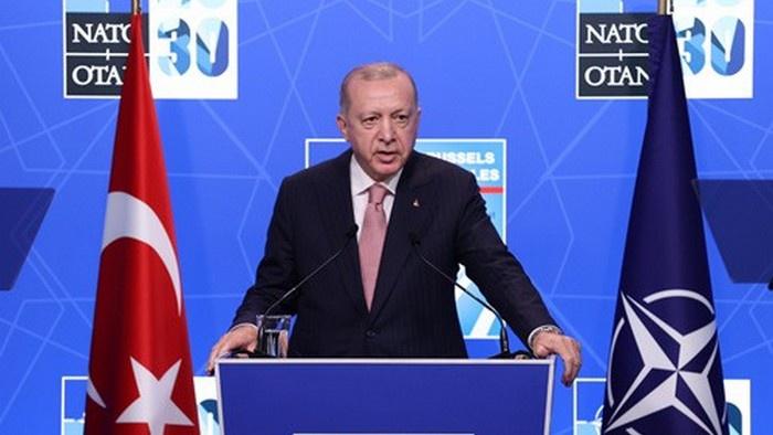 Турция: «возвращение приблудного сына» Эрдогана в лоно НАТО