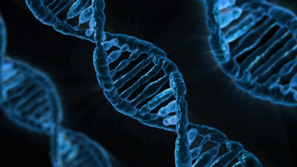 Сотрудники американских биолабораторий в разных странах занимаются сбором генетического материала местных жителей.