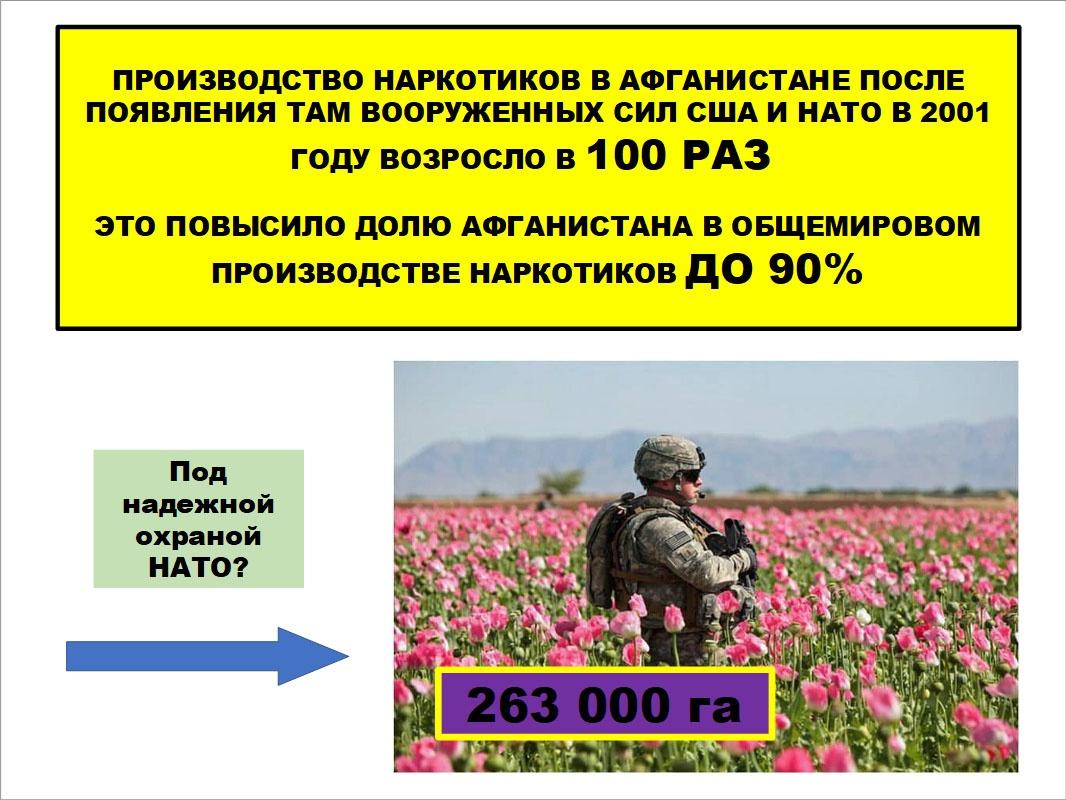 С приходом вооружённых сил США и НАТО производство наркотиков в Афганистане резко возросло.