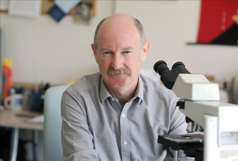 Главный «движитель» «нейроправ» - американский нейробиолог Рафаэль Юсте из Колумбийского университета (Нью-Йорк).