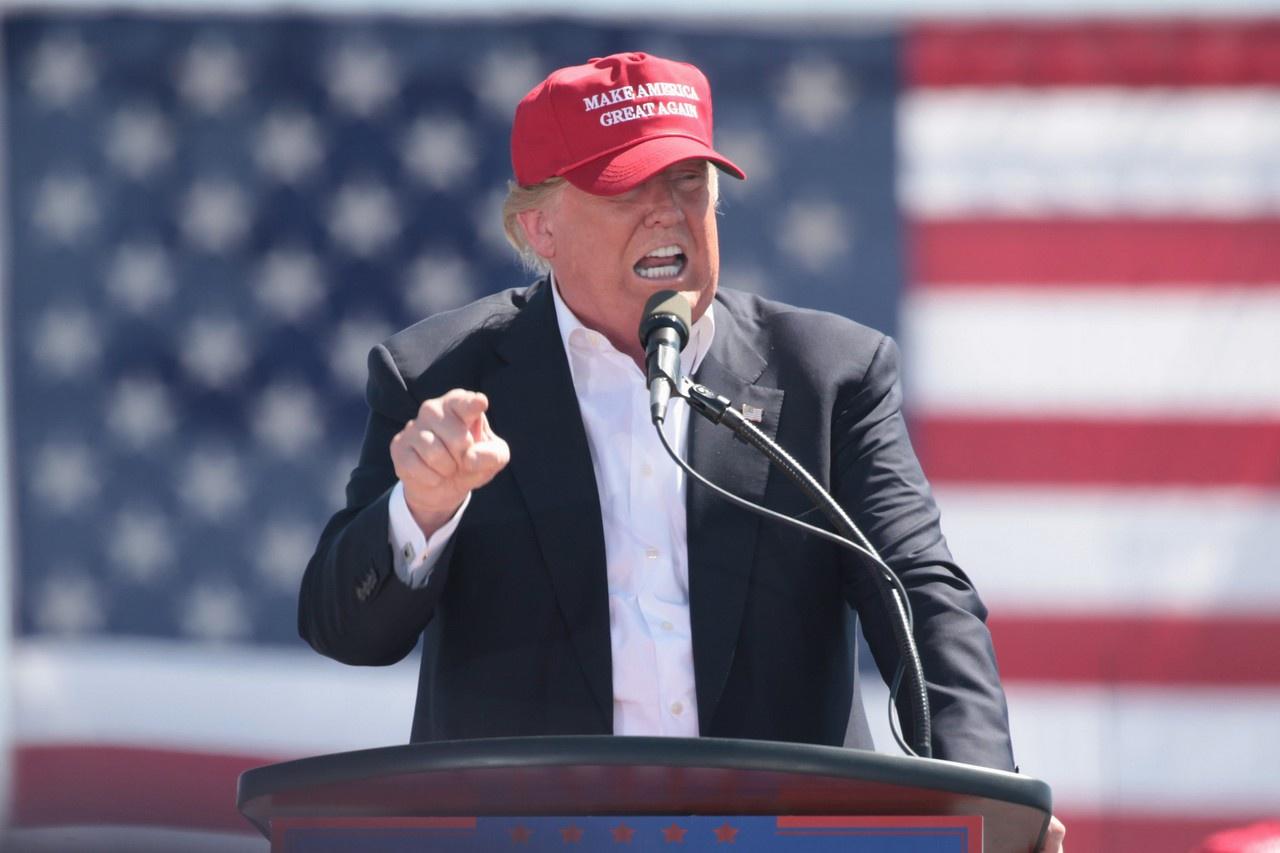 Make America Great Again («Сделаем Америку снова великой») - лозунг, использующийся американскими политиками, преимущественно Дональдом Трампом в его президентской кампании 2016 года.