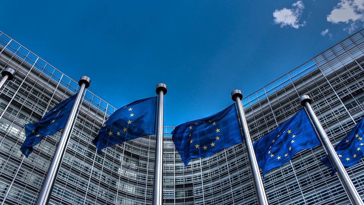 Условия принятия в ЕС и созданная на их базе система предполагали, что «младоевропейцы» отказываются от поддержки собственной промышленности и дают умереть большинству её отраслей.
