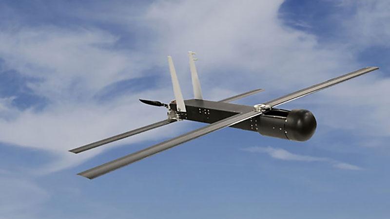 Беспилотная авиационная система Coyote Block.