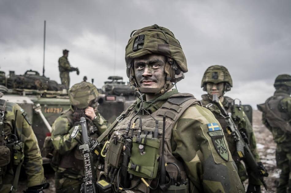 Численность шведской армии по современным меркам невелика - около 30 тыс. «штыков» и почти 35 тыс. резервистов.