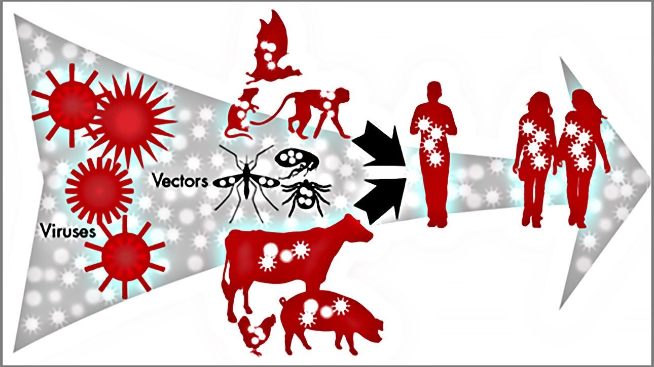 Откровения бактериологических мудрецов