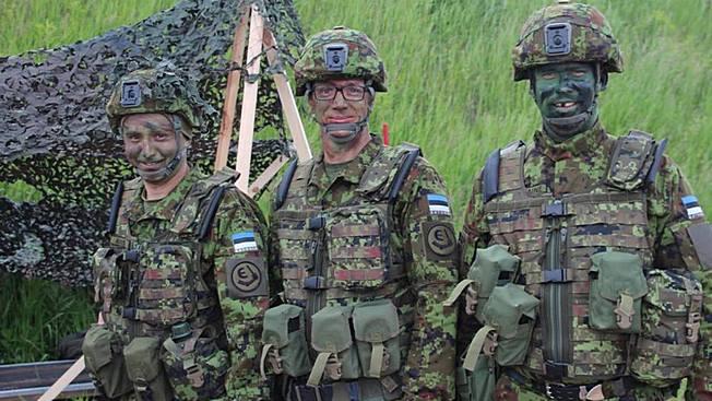 Прибалтийские лимитрофы: дряблые иголки противотанковых «ежей» НАТО