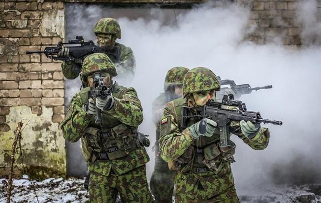 Добровольные силы охраны края (Литва)