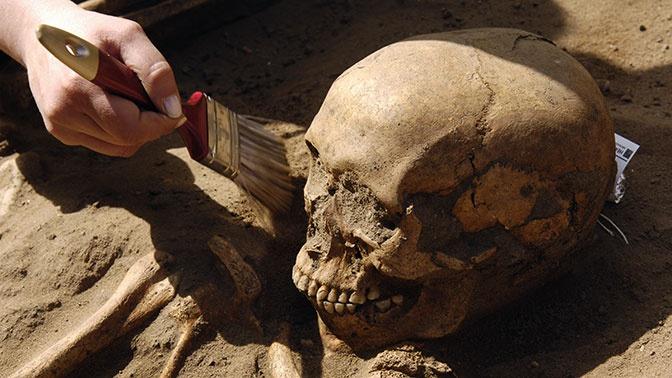 Загадка крови: ученые разгадали тайну древней братской могилы в Польше