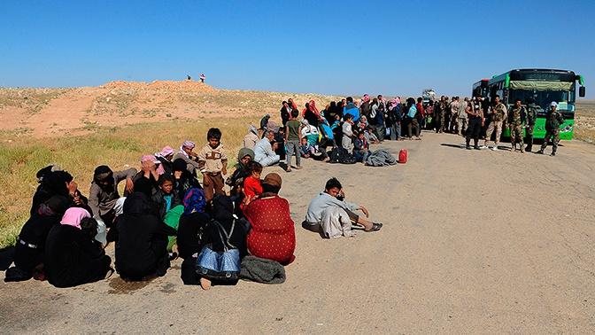 Лагерь «Эр-Рукбан» покинули более 700 беженцев за сутки