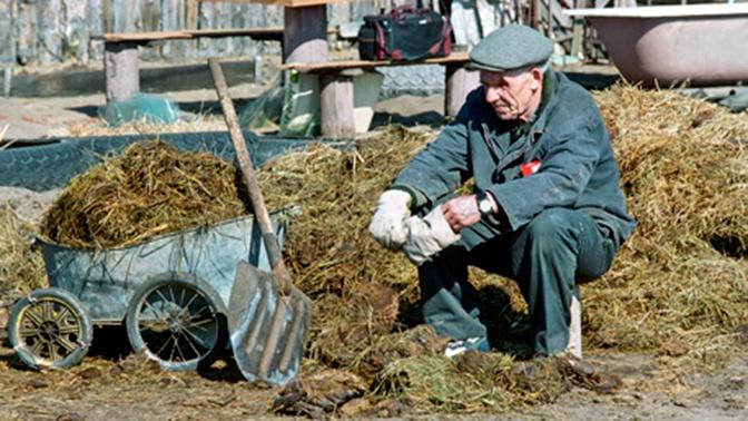 В США разрешили удобрять огороды останками людей