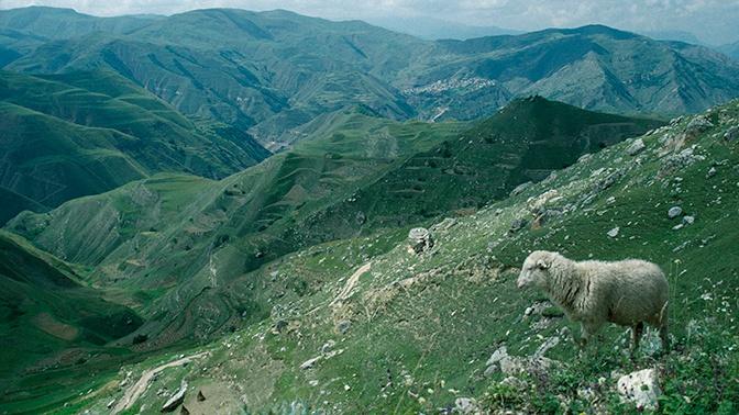 В Дагестане за ночь произошло два землетрясения