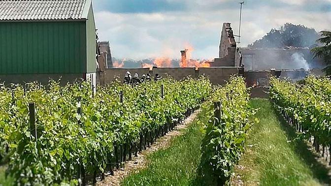 Пожар уничтожил 250 тысяч литров коньяка во Франции