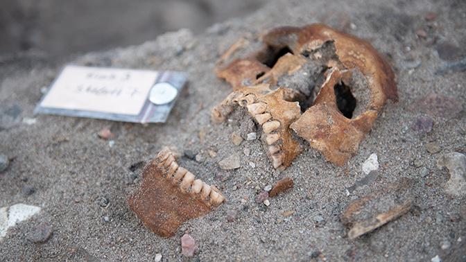 В Греции найдены древнейшие в Европе человеческие останки