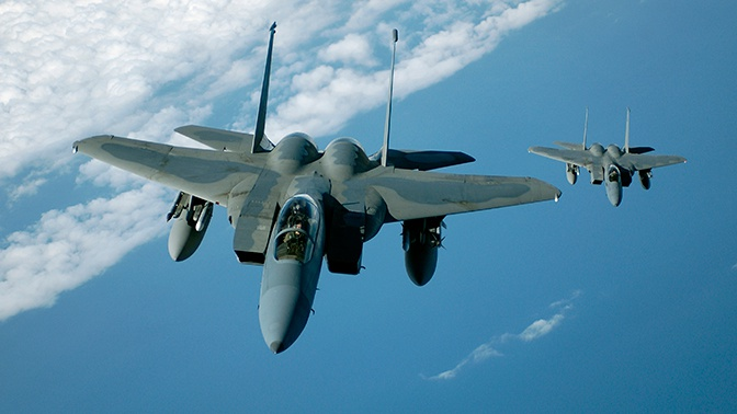 Птица в двигателе экстренно «посадила» истребитель США в Польше