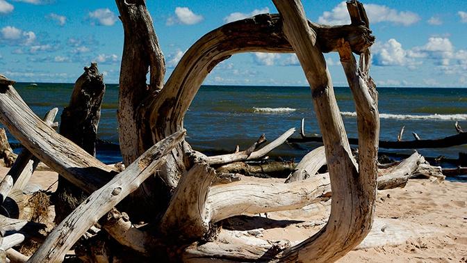 Погибший 10 тысяч лет назад мир нашли на дне Балтики