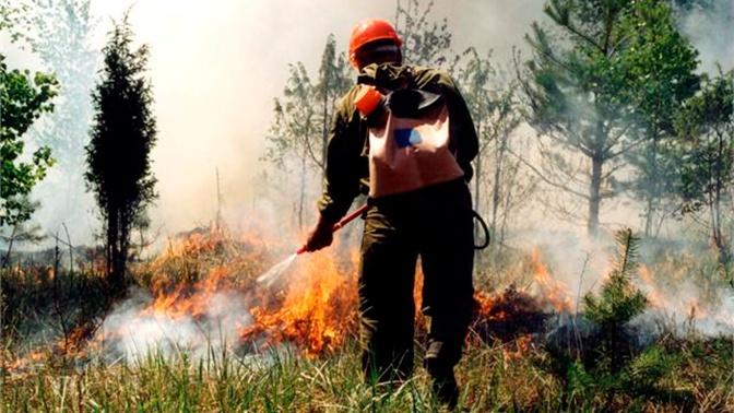 Участникам тушения пожаров в Якутии выплатят деньги