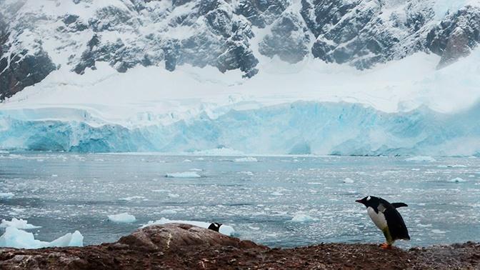 «Затерянную» пещеру с рекой и озерами нашли в Антарктиде