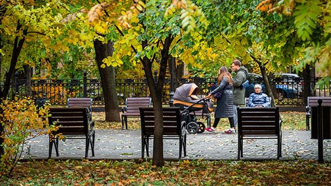 Тепло и дождливо: в Москву придет майская погода