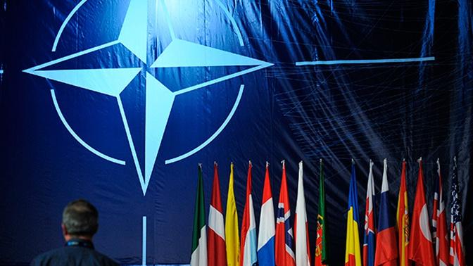 Министры обороны НАТО обсудят операцию Турции в Сирии